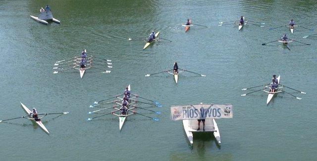 Piraguas en el río en defensa del Guadalquivir