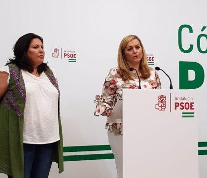 """PSOE-A espera que el Gobierno """"atienda las necesidades"""" de jornaleros y aporte más fondos al PFEA"""