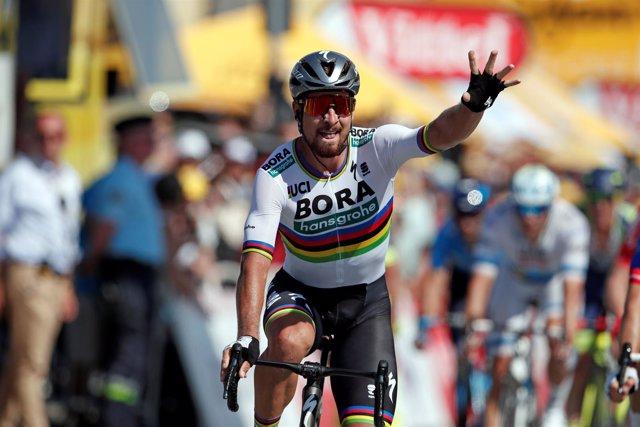 Peter Sagan segunda etapa Tour Francia