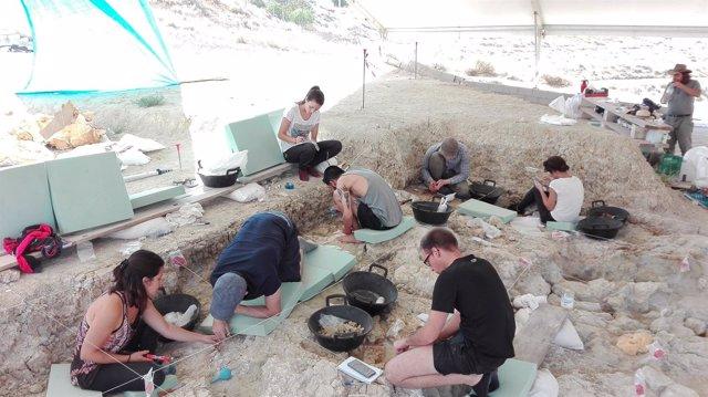 Trabajos en los yacimientos de Orce (Granada)