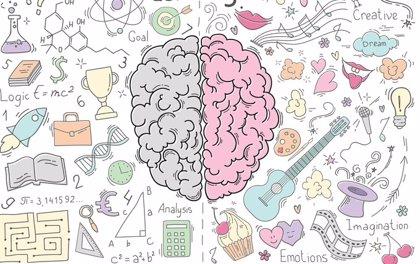 Detectan las células cerebrales que mejoran el aprendizaje