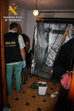 Inspección De La Vivienda De Uno De Los Detenidos 9-7-2018