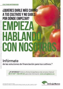 Unicaja Banco Apoya Un Año Más Al Sector Agrario En Su Nueva Campaña De Financia
