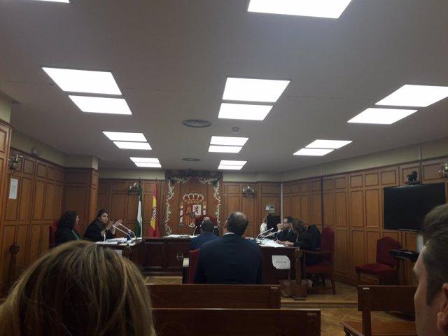 Juicio sobre las supuestas irregularidades en el congreso del PP de Granada