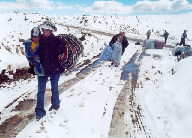 Se registran más de 30.700 casos de neumonía en Perú