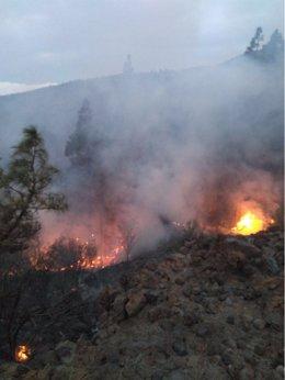 Imágenes del helicóptero del GES en el incendio forestar declarado en Tenerife