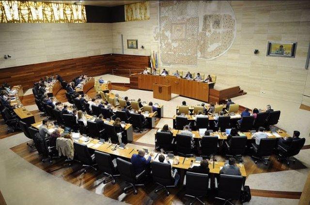 Pleno en la Asamblea