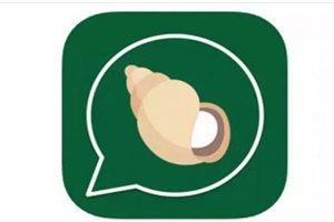 ¿WhatsApp tiene miedo? Llega al mercado Kimbho, la app que promete destronarla