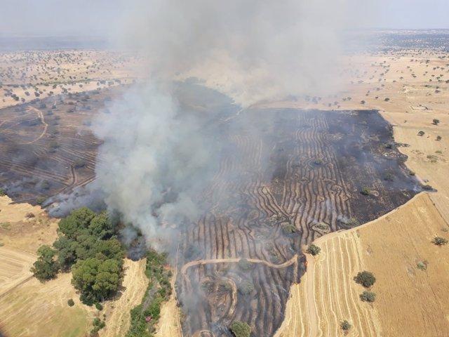 Zona afectada por el fuego en Belalcázar