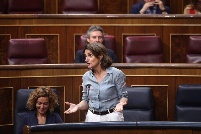Teresa Ribera, ministra de Transición Energética