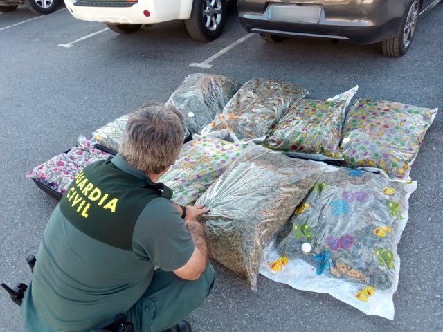 Marihuana interceptada en la A-92N
