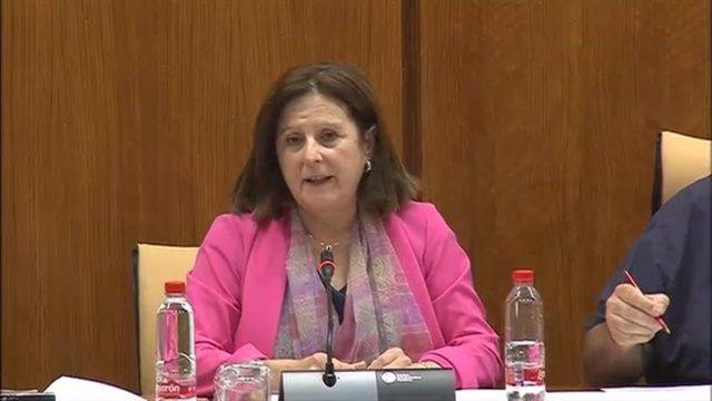 María José Sánchez Rubio en Comisión en el Parlamento
