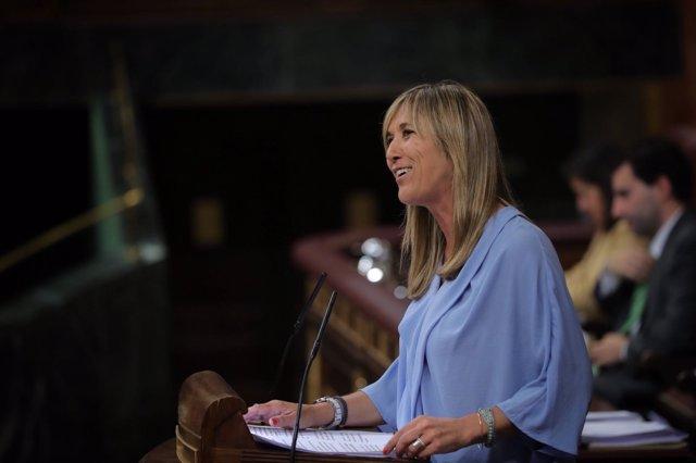 Teresa Palmer en el pleno del Congreso