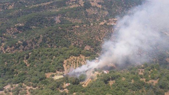 Incendio forestal en paraje la pedrera de jubrique málaga infoca