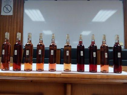 El laboratorio gallego de vinos estudia el potencial de las variedades autóctonas para elaborar vinos rosados
