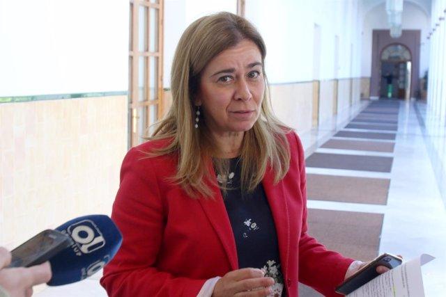 La portavoz de Empleo del PP-A, Teresa Ruiz-Sillero