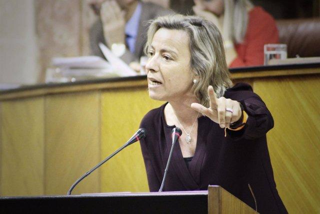 La diputada autonómica de Cs Andalucía Isabel Albás
