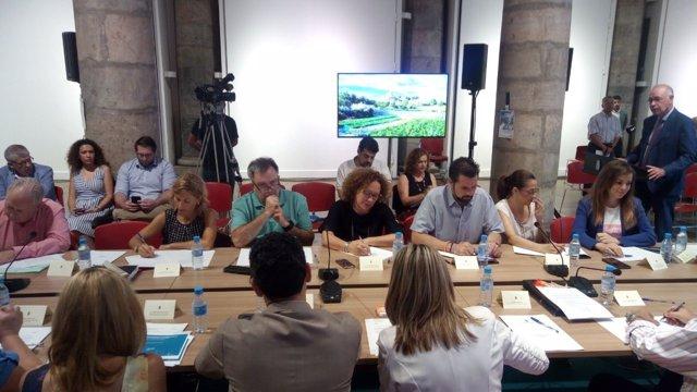 Ahora Murcia, en el Consejo Social del Ayuntamiento de Murcia