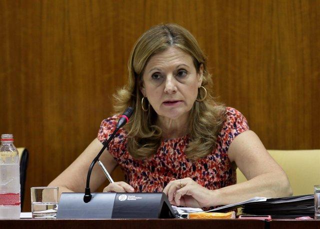 Marina Álvarez en comisión parlamentaria