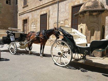 """EUIB reprocha a Cort que permita que los caballos de las galeras de Palma permanezcan al sol """"a más de 30 grados"""""""