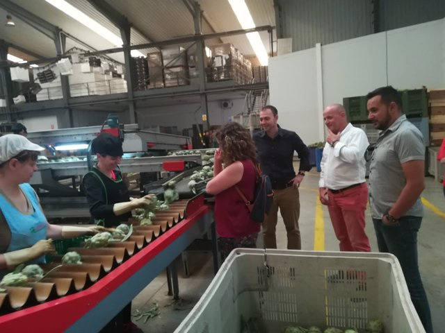 Visita a empresa hortofrutícola