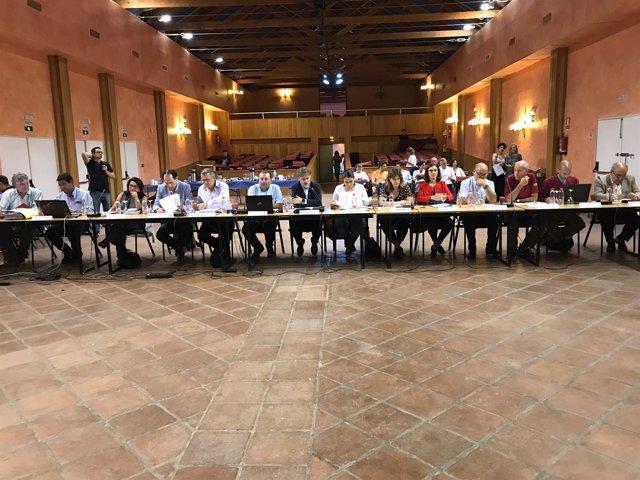 Consejo de Participación de Doñana celebrado en Almonte.