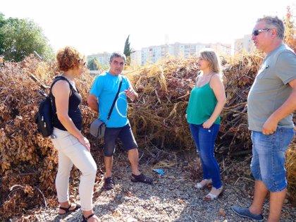 """IU pide explicaciones por el """"acopio incontrolado de rastrojos y ramas secas"""" en el Cortijo de Miraflores"""