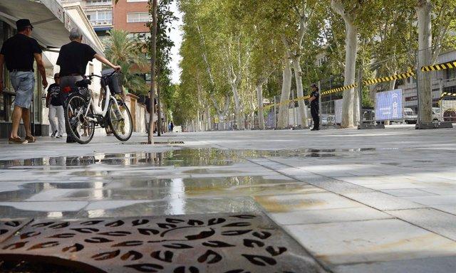Peatonización Alfonso X