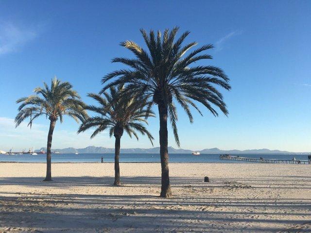 Alcúdia, archivo, recurso, playa, sol, verano, Mallorca, turismo