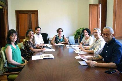 El Ayuntamiento de Santa Cruz de Tenerife recibe 29 propuestas para el concurso contra la violencia de género