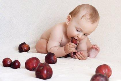 Los bebés que comen alimentos sólidos antes duermen mejor