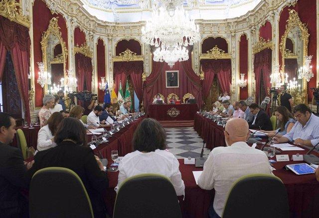 Pleno de junio de la Diputación de Cádiz