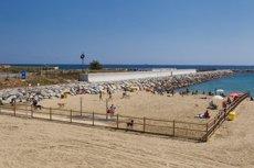 La platja de Llevant de Barcelona obre 1.250 metres quadrats per a ciutadans amb gossos (AYUNTAMIENTO DE BARCELONA)
