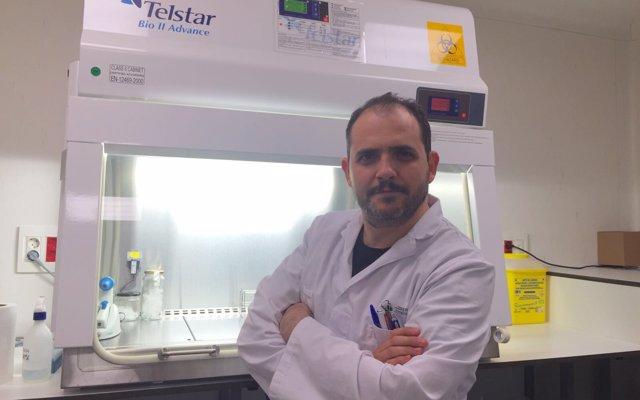 Descubren nuevos mecanismos para combatir la calcificación vascular