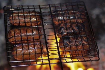 Combatiendo la acrilamida, la sustancia tóxica que se produce cuando 'quemamos' los alimentos