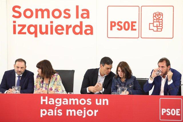Pedro Sánchez preside la reunión de la Comisión Ejecutiva Federal