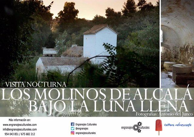 Cartel anunciador de la visita nocturna a los molinos de Alcalá bajo la luna.