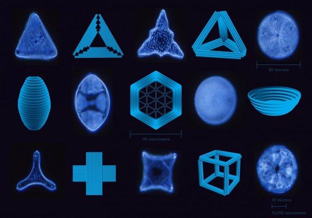Una selección de nanoestructuras construidas con origami de ADN, junto con diato