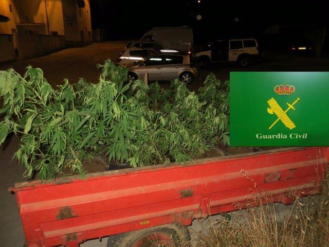 Tractor con marihuana cazado en Oimbra