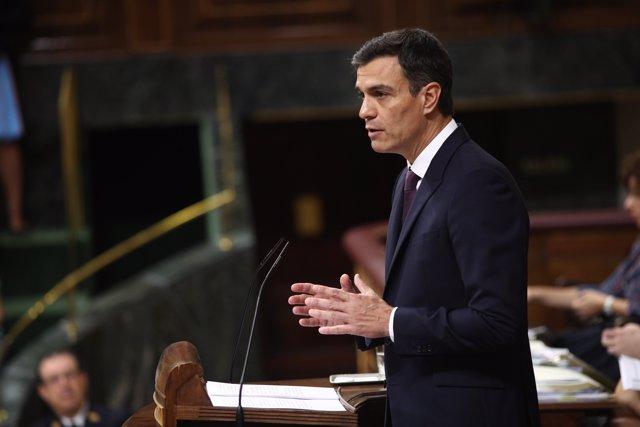 Pedro Sánchez informa al Congrés del seu programa de govern