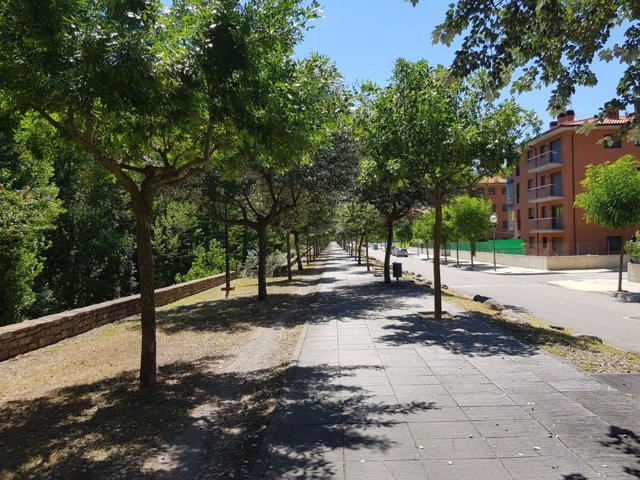 Passeig Josep Borrell i Fontelles