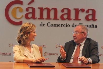 Cámara de España y Fundación Cotec acuerdan impulsar la innovación entre las empresas españolas