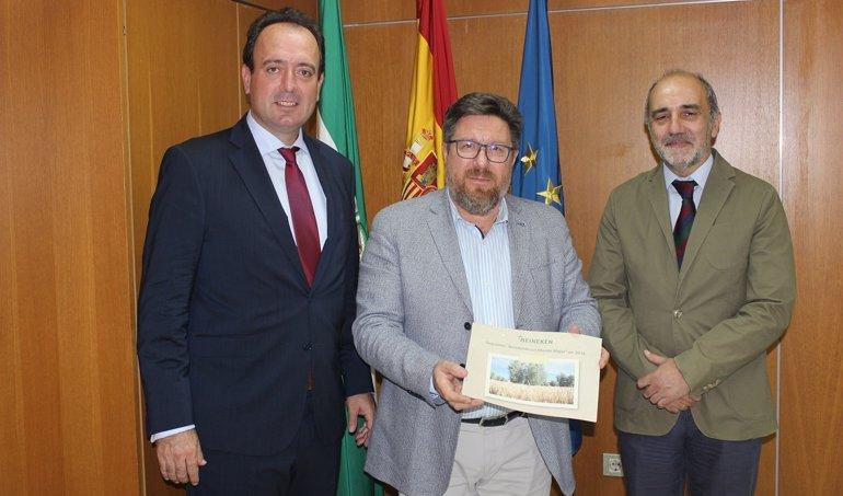Es Andalucía - Sevilla