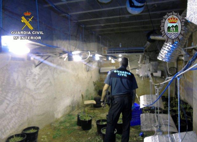 Detenido un joven con 4 kilos de marihuana en su vivienda en Fortuna
