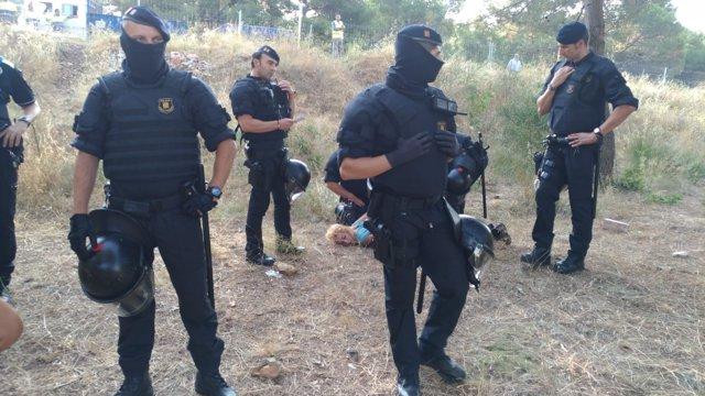 Una detenida en el desalojo de una pineda de Castelldefels que se urbanizará
