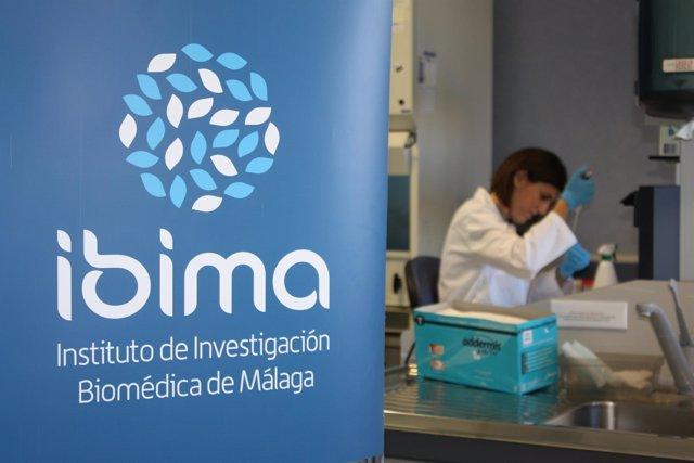Ibima Impulsa La Investigación En Málaga Al Duplicar El Número De Nuevos Proyect