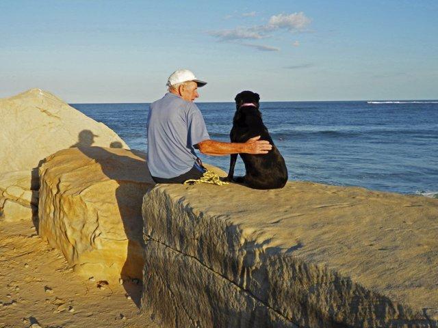 Un hombre mayor con un perro, alzheimer, animalterapia