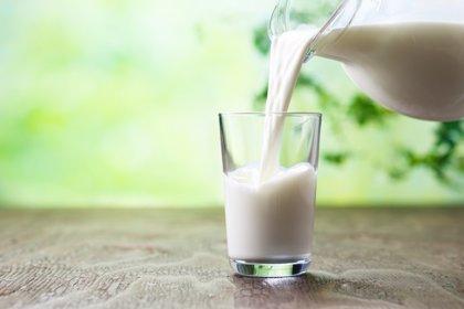 """La Organización de Consumidores advierte de que el consumo de leche cruda entraña """"riesgos sanitarios elevados"""""""