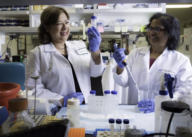 Saswati Chatterjee ha descubierto un mecanismo para corregir defectos genéticos