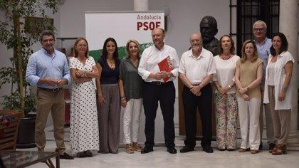"""PSOE-A pide """"ayudas"""" para el sector de la aceituna de mesa ante la """"caída"""" de exportaciones por los aranceles"""